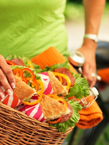 Sweden, Stockholm, Bromma, sandwiches in bicycle basket