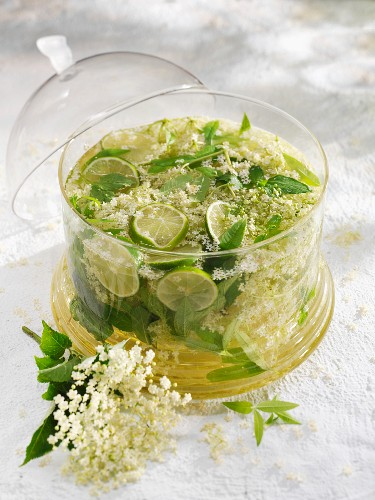 Elderflower cordial with herbs and lime