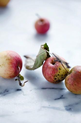 Heirloom apples on a marble tabletop