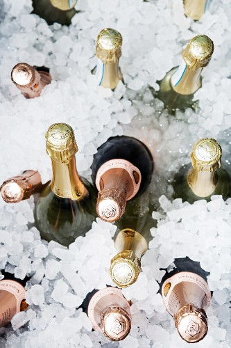Bottles of champagne in iced water