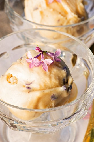 Creamy ice cream with honey and lilac
