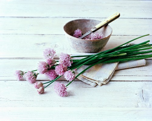 Fresh chives with flowers on a cloth