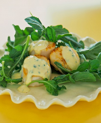 Scallops with chive sauce