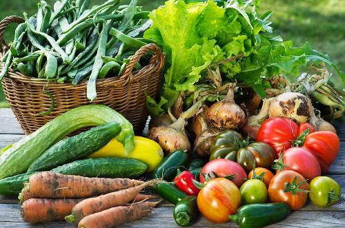 Erntestillleben mit Gartengemüse auf Holztisch