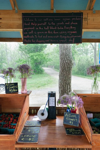 A self-service market stall at the side of the road (USA)