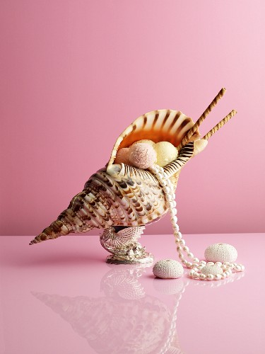 Scoops of ice cream in a shell with a pearl necklace