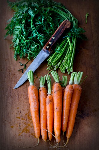 A bundle of carrots with the green leaves cut off