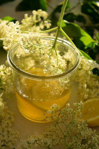 Homemade elderflower syrup