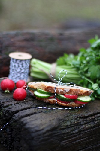 A fresh vegetable sandwich for supper