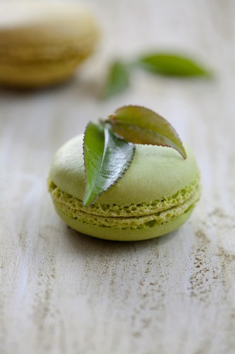 A green tea macaroon
