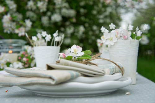 Napkins and apple blossom on plate