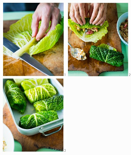 Savoy cabbage packages filled with tomatoes, Parmesan cheese and sun wheat being made