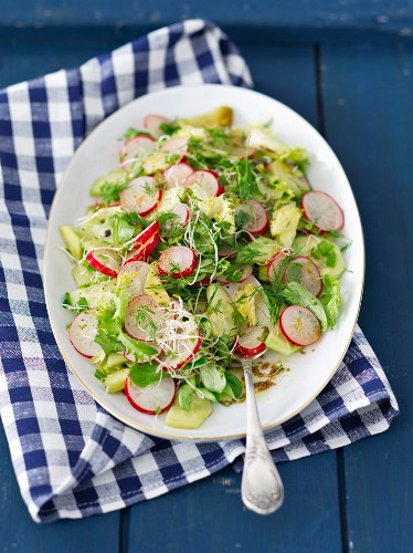 A salad with cucumber, radishes, dill and bean sprouts