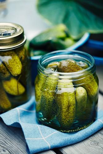 Salted gherkins in screw-top jars
