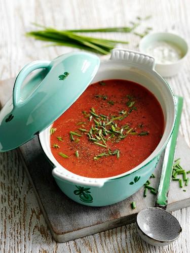 Rote-Bete-Suppe mit Möhren