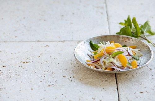 Orange and fennel salad with red onions