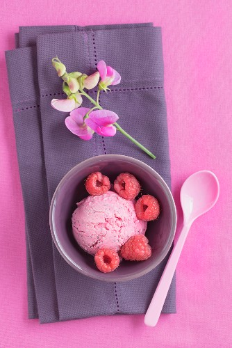 Raspberry ice cream with poppy seeds and a flower on a napkin