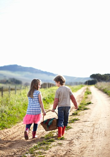 Two children carrying picnic basket along farm track