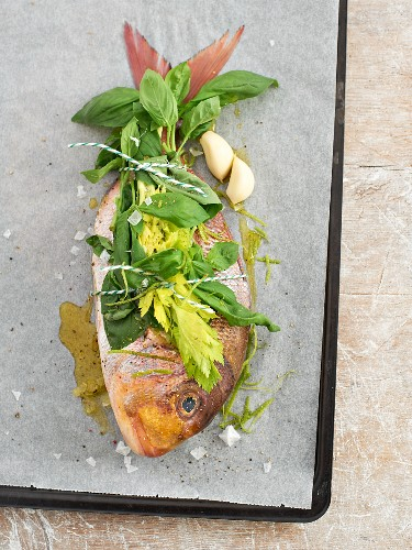 A raw bream with fresh herbs on a baking tray
