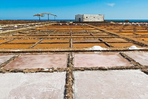 Salt pans at El Carmen Salt Museum on the east coast, Caleta de Fuste, Fuerteventura, Canary Islands, Spain, Europe