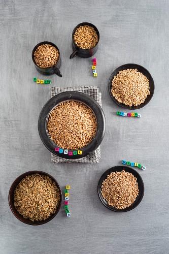 Verschiedene Getreidearten in Tassen und Schalen