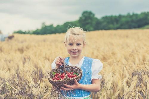 Mädchen im Dirndl steht inmitten eines Kornfeldes & hält Körbchen mit Johannisbeeren