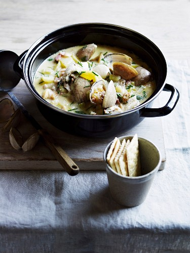 New England style clam chowder and crackers