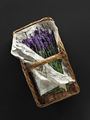 Flowering lavender on newspaper in a basket