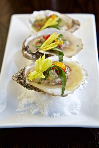 Oysters on a bed of salt