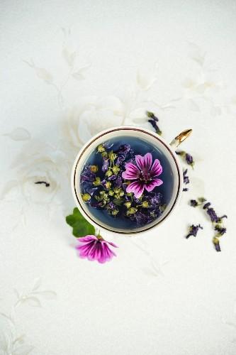 Cold common mallow tea (malva sylvestris)