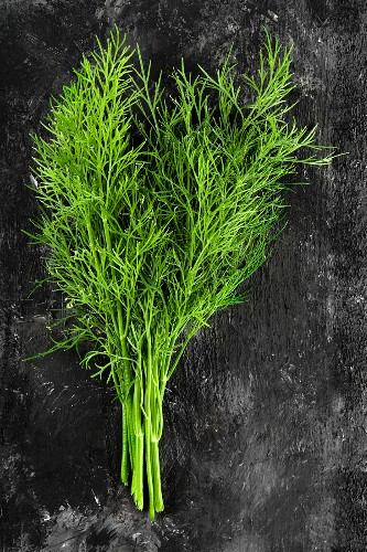 A bunch of fresh dill on a dark surface