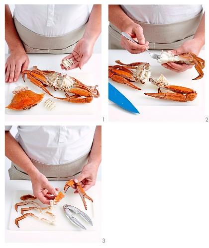Krabbenfleisch auslösen