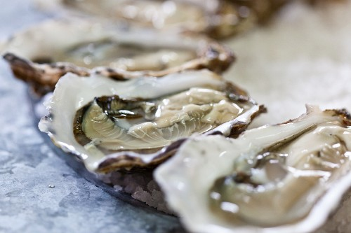 Fresh, opened oysters (close-up)