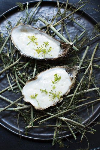 Oyster and almond emulsion and dill flowers, 'Cordobar', Berlin, Germany