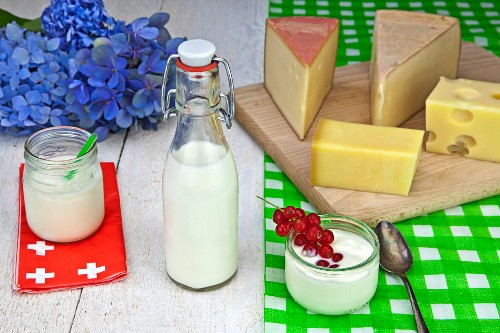 Swiss cheese and dairy products