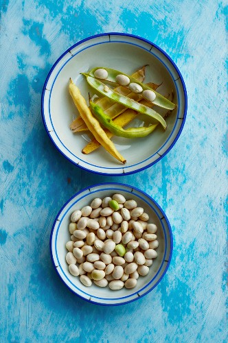 White beans and pods in two dishes