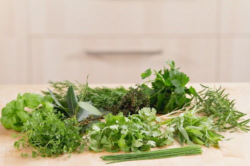 Fresh Herb Still Life