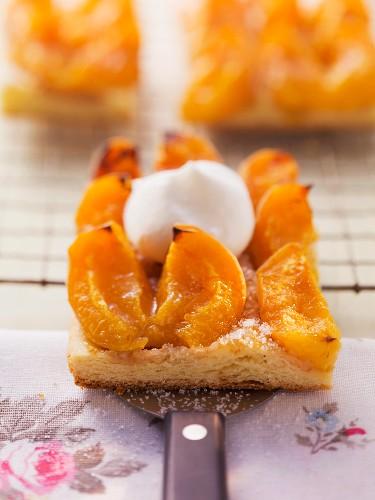 Aprikose-Blechkuchen mit Sahne