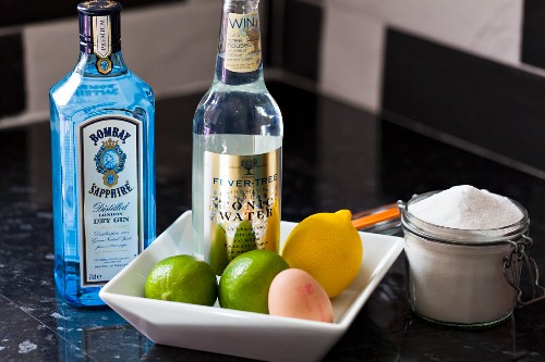 Ingredients for gin and tonic