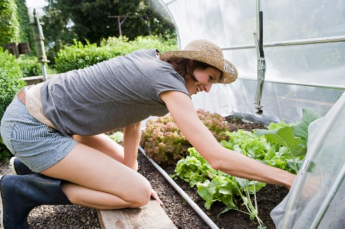 A woman by a vegetable patch in a garden