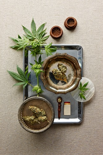 Marijuana Leaves and Buds; With Pipe and Matches on a Tray; From Above