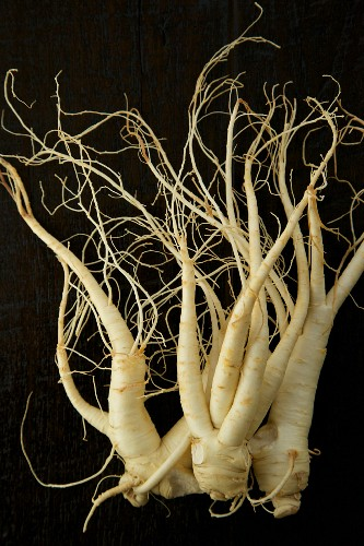 Korean Ginseng on a Black Background