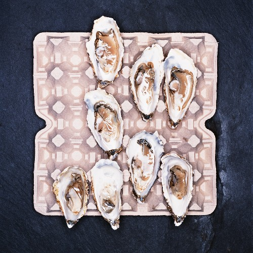 Opened oysters on an egg box