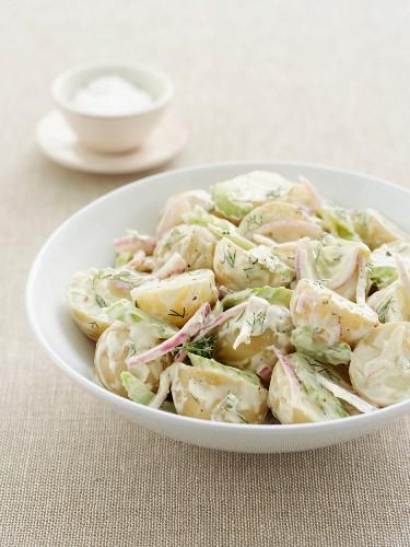 Potato salad with red onions, celery and dill-yogurt sauce