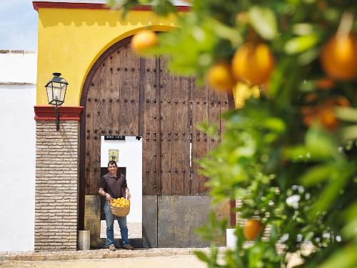 Man standing at doorway with oranges