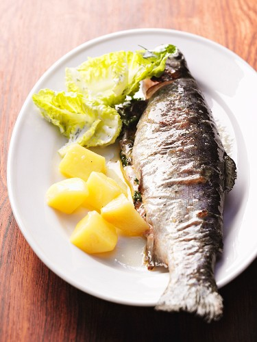 Steamed trout with potatoes and mayonnaise