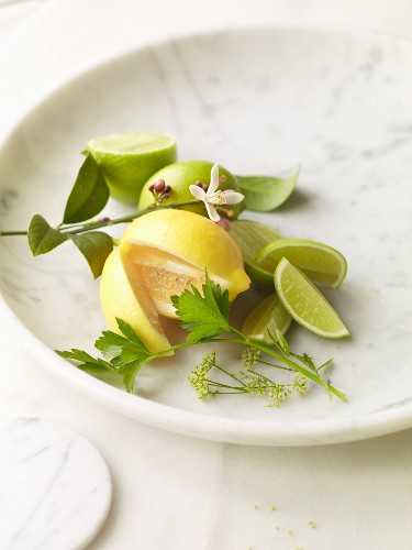 Meyer Lemon and Limes on Marble Plate with Lemon Blossom Branch