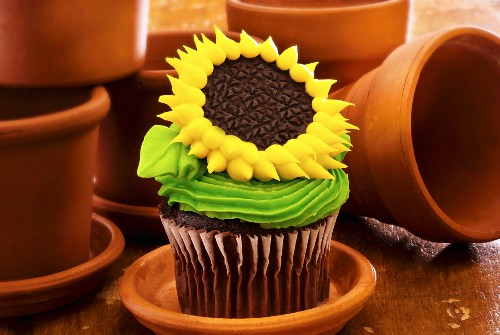 Sunflower Cupcake with Clay Flower Pots