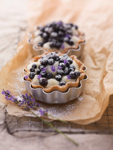 Two blueberry tartlets with lavender flowers