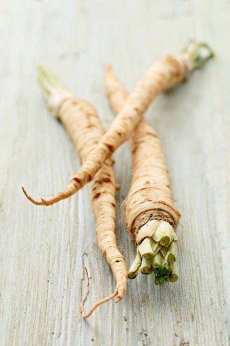Organic Hamburg Root Parsley